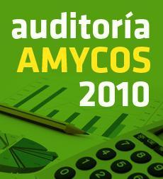 Cuentas Anuales 2010