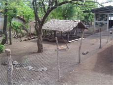 Mejora de las condiciones socio-económicas de la comunidad de Mokorón. Fase II