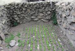 Dotación de agua potable a las comunidades indígenas de Chinchiri y Pucara Grande, Morochata