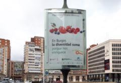 LA CAMPAÑA DE AMYCOS 'MIGRACIONES SUMANDO DIFERENCIAS' ES VISIBLE EN LAS CALLES DE BURGOS