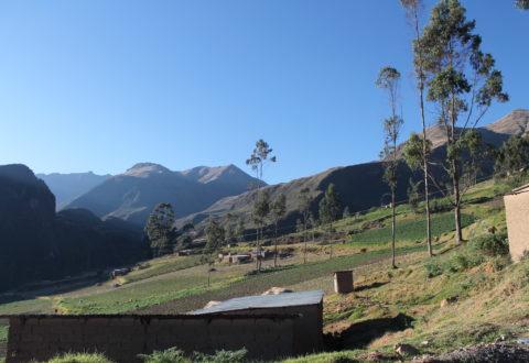 """""""Mejora de la calidad de vida de la comunidad indígena de Parte Libre, en el municipio Morochata, Departamento de Cochabamba (Bolivia), a través del alcance de los DDHH al Agua y a la Alimentación"""""""